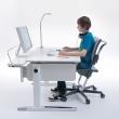 Multi Deck panel pogłębiający biurka Champion